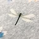 1356 simplicity dresses pattern 1356 envelope back